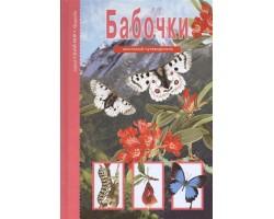Бабочки. Школьный путеводитель